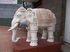 White Elephant Meaning