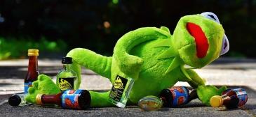 kermit-drank-too-much