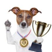 Top Dog Etymology